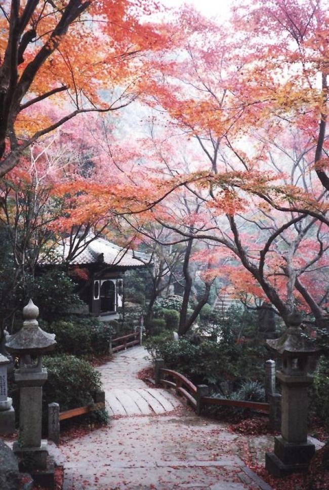 VIAJES GRUPALES A CHINA Y JAPON DESDE ARGENTINA - Viajes Exoticos